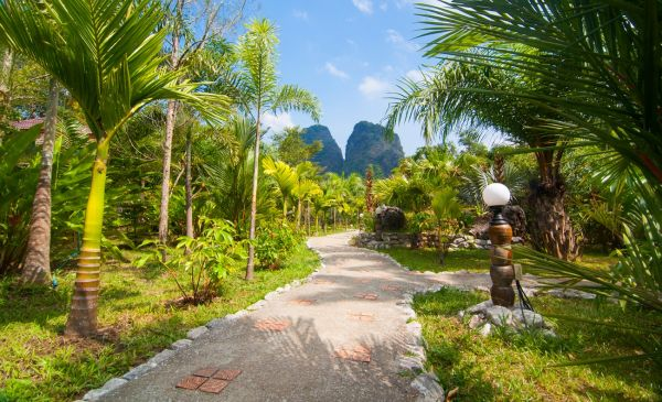 Khao Sok: The Khao Sok Hotel & Spa