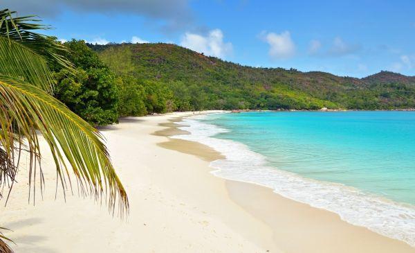 rondreis zuid afrika seychellen 1 mooivakantiesmooie combinatie van safari �n strand